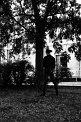 161. Place | Marathon | Fussel unterm sova (1012) | Baum-Bäume