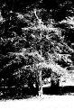 Erich K. (1013) - ∅ 5.67