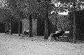 170. Place | Marathon | Sascha K. (1042) | gemütlich