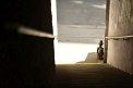 170. Platz | Marathon | Sascha K. (1042) | Stiegen-Stufen-Treppen
