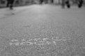 172. Place | Halbmarathon | Bojana S. (1047) | am Boden