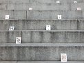 37. Platz | Jugendbewerb | Die Unfassbaren 3  (1048) | Stiegen-Stufen-Treppen