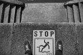 337. Platz | Halbmarathon | Chistoph H. (1057) | Abenteuer Stadt