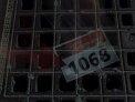 145. Place | Marathon | Michele G. (1068) | Endstation