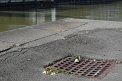350. Platz | Halbmarathon | Milan K. (1069) | am Donaukanal