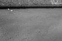 194. Place | Marathon | Andreas D. (1091) | am Donaukanal