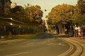 365. Place | Halbmarathon | Alexander K. (1112) | Die Wiener Ringstraße