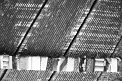 Konstanze L. (1115) - ∅ 4.67