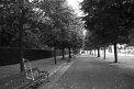 183. Place | Marathon | Konstanze L. (1115) | Baum-Bäume