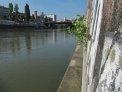 199. Place | Marathon | Graziella H. (1117) | am Donaukanal