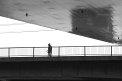 210. Platz | Halbmarathon | Erwin P. (132) | am Donaukanal