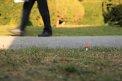 272. Place | Halbmarathon | Günther Z. (136) | am Boden