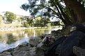 415. Platz | Halbmarathon | Niklas R. (157) | am Donaukanal