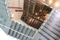 257. Place | Halbmarathon | Michael W. (171) | Stiegen-Stufen-Treppen
