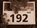 447. Place - Elisabeth S. (192)