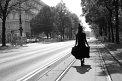 16. Platz | Halbmarathon | Michaela K. (219) | Die Wiener Ringstraße