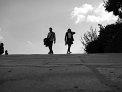 395. Place | Halbmarathon | Stevie T.  (220) | am Boden