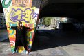 50. Place | Marathon | Diana Schermann (252) | farbenfroh