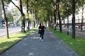 50. Place | Marathon | Diana Schermann (252) | Die Wiener Ringstraße