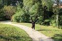 50. Place | Marathon | Diana Schermann (252) | (in) Bewegung
