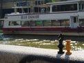 104. Place | Marathon | Helmar B. (275) | am Donaukanal