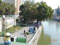 395. Place | Halbmarathon | Ingrid R. (280) | am Donaukanal