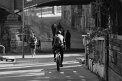 286. Platz | Halbmarathon | Patrick E. (307) | am Donaukanal