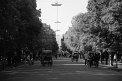 272. Place | Halbmarathon | Royalyty (31) | Weitblick