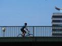 317. Place | Halbmarathon | Herwig K. (323) | Abenteuer Stadt