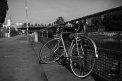 91. Place | Halbmarathon | Oli W. (325) | am Donaukanal