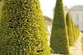 161. Platz | Marathon | Gertraud S. (346) | Baum-Bäume