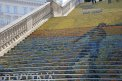 27. Place | Jugendbewerb | Hanna.S (364) | Stiegen-Stufen-Treppen