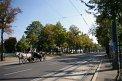 91. Place | Marathon | Tanja F. (367) | Die Wiener Ringstraße