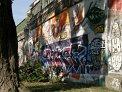 395. Place | Halbmarathon | Kathrin R. (382) | farbenfroh