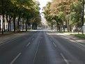 395. Place | Halbmarathon | Kathrin R. (382) | Die Wiener Ringstraße