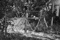 135. Place | Marathon | Roland S. (383) | nützlich-nutzlos
