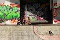 61. Place | Halbmarathon | Anna N. (390) | am Donaukanal