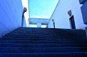 210. Platz | Halbmarathon | Dick und Doof (393) | Stiegen-Stufen-Treppen
