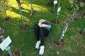 66. Place | Jugendbewerb | Katrin P. (395) | am Boden