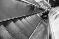96. Place | Marathon | Meike W. (40) | Stiegen-Stufen-Treppen