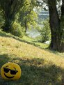 455. Place | Halbmarathon | Barbara H. (411) | am Donaukanal