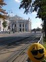 455. Place | Halbmarathon | Barbara H. (411) | Die Wiener Ringstraße