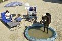 1. Platz | Halbmarathon | crazy horses (437) | am Donaukanal