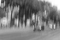 48. Place | Marathon | Ariadni M. (458) | Die Wiener Ringstraße