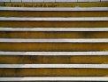 337. Platz | Halbmarathon | Tinchen (476) | Stiegen-Stufen-Treppen