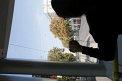 257. Place | Halbmarathon | Marie-Claire K. (509) | Die Wiener Ringstraße