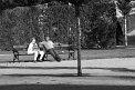 61. Platz | Marathon | Bernhard E (529) | gemütlich