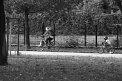 61. Platz | Marathon | Bernhard E (529) | (in) Bewegung