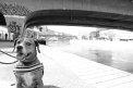 75. Platz | Halbmarathon | Nadine Sch. (551) | am Donaukanal