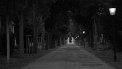 139. Platz | Marathon | Schwinni (562) | im Dunkeln